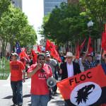 FLOC_2